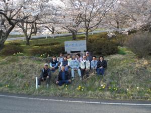 2010_nagadoro_sakura